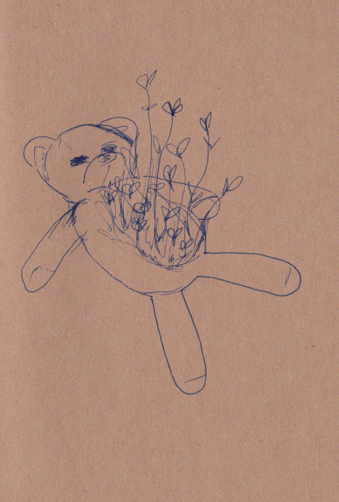 Teddy Seeded