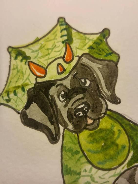 blog pup2